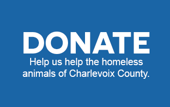 donate graphic 2